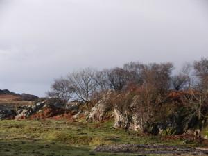 Photo - Skye landscape
