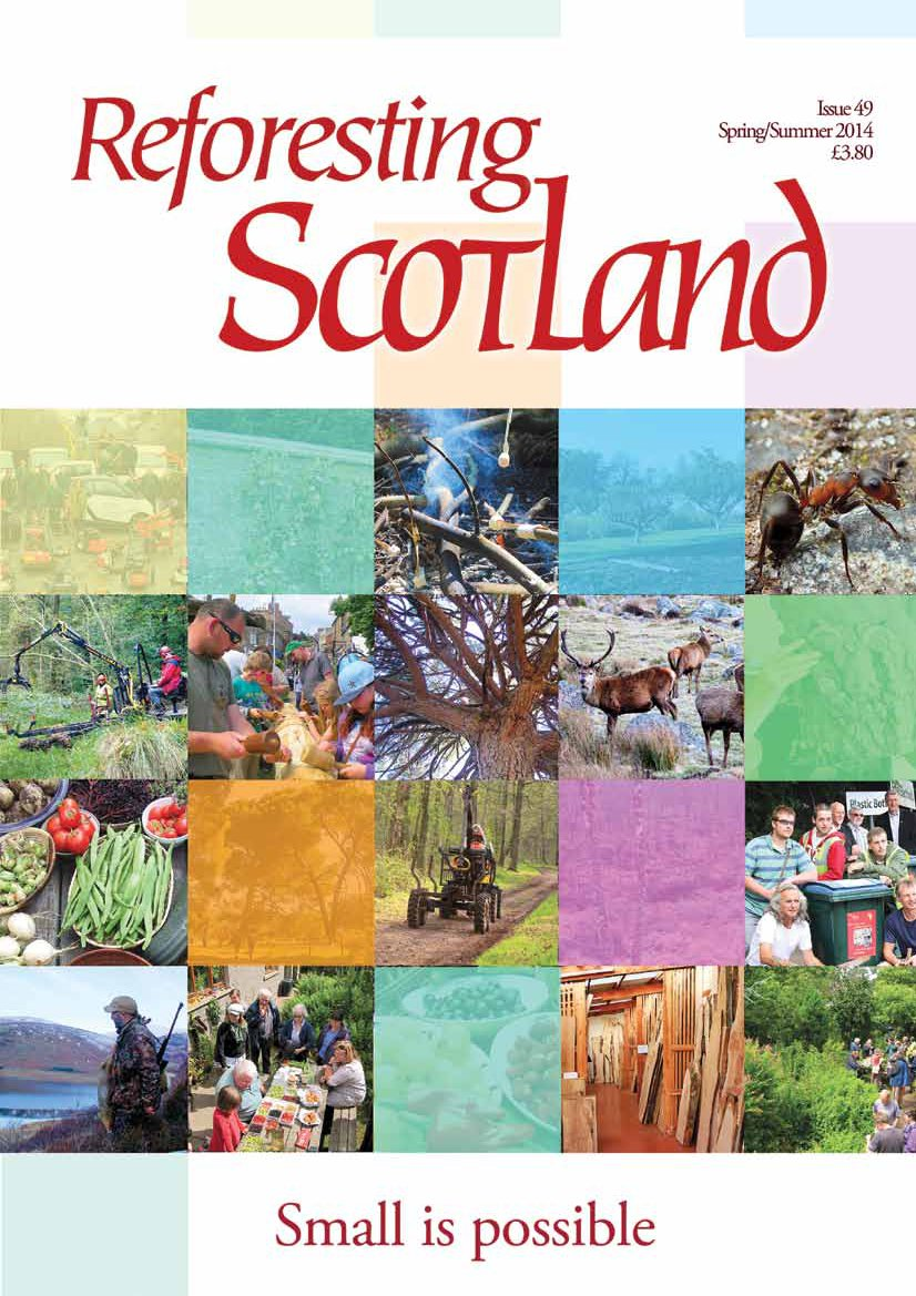 Cover of Reforesting Scotland Journal Issue 49