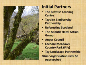 Coppice Festival - initial partners - slide from presentation at 4th StarTree Regional Stakeholder Group meeting, Scotland