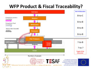 Wild forest products and fiscal traceability? - Enrico Vidale