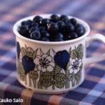 Blaeberries - photo by Kauko Salo