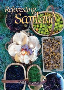 Cover of issue 55 of the Reforesting Scotland Journal