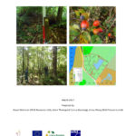 """Cover of StarTree document """"Protocol for woodland resource survey"""""""